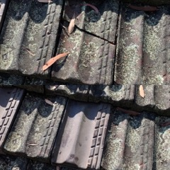 Emergency Roof Repairs & Replacement Sydney